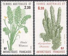 FSAT/TAAF 1986 Plants/Nature/Daisy/Lycopodium saururus  2v set (n22818)