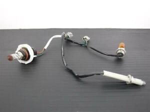 03-07 Nissan Murano Front Headlamp Wire Harness Halogen OEM 26038-CA100