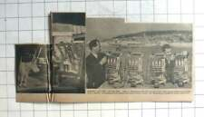 1962 Men Preparing Penny In The Slot Fruit Machines For Weston-super-Mare Pier