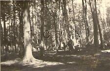 WWII German RP- Uniformed Youth- Lager Mecklenburg- Tent- Camp in Woods- 30s-40s