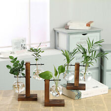 BE_ Hydroponic Plant Vases Glass Vase Vintage Bonsai Flower Pot Wooden Home Deco