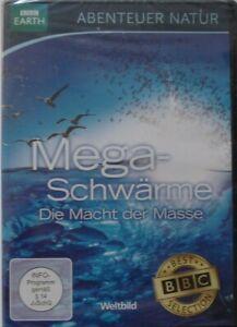 DVD - Abenteuer Natur - Megaschwärme - BBC - OVP