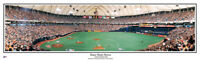 Minnesota Twins Metrodome Homer Hankey Heaven Unframed Panoramic Poster #2021