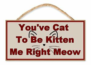 """You've Cat to be Kitten me Right Meow 5"""" x 10"""" Wooden Funny Sign"""
