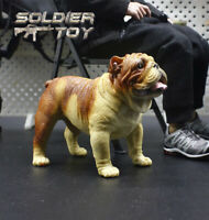 """Free Shipping 1/6 Scale Bulldog Dog Model Animal for 12"""" Action Figure Soldier"""