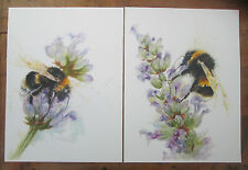 Bees on lavender pair of watercolour prints 16 x 12  on watercolour paper