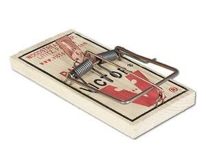 12 Victor Mouse Trap M040 Wooden Mouse Trap | Lot of 12