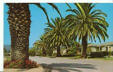America Postcard - Residential Street in Pacific Palisades - California   DP340