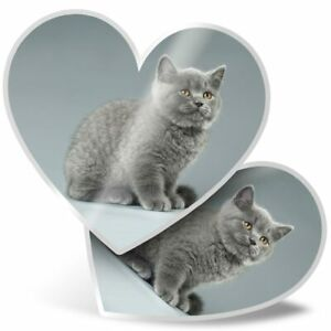2 x Heart Stickers 15 cm - Blue British Kitten Cat Grey Fluffy  #44353