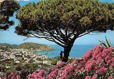 B33806 Isola D`Ischia Laco Ameno   italy