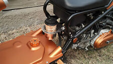 Honda Ruckus Stainless Steel Cup Holder and Bracket / Cupholder Drink