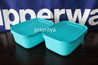 Tupperware Freezer Mates PLUS Small Shallow Container Set of 2 Blue New