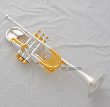 Professional Heavy C Key New Trumpet Silver/Gold Customized series Horn new Case