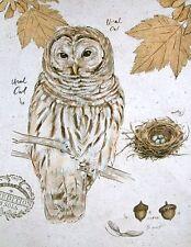 Chad Barrett: Ural Owl Fertig-Bild 30x40 Wandbild Eule Vögel