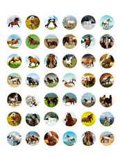 Horse Themed PRINTABLE Bottle Cap Images ~ 42 Different Designs!