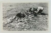Postcard RPPC A Desert Tragedy Dead Horse Skull Bones Wagon Ran out of Water