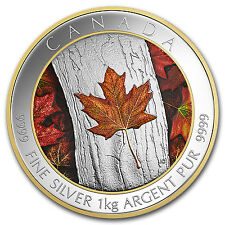 2016 Canada 1 kilo Silver $250 Maple Leaf Forever - SKU #98830