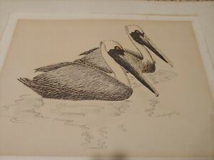 Vintage 1978 Jean Jannopoulo Pelican Print Numbered & Signed Litho 108/300