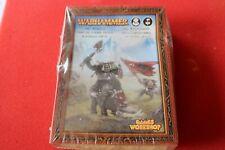 Games Workshop Warhammer Orcs Warboss Orc Orruks Foot and Mounted OOP GW BNIB