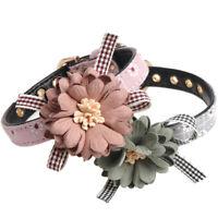 Small Cat Dog Collar Flower Charm Adjustable Pet Collars Leash Yorkie Chihuahua