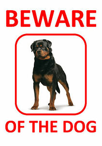 2 x ROTTWEILER - BEWARE OF THE DOG  - LAMINATED RED SIGN FUN