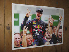 Sebastian Vettel F1 2012 Formula One World Champion POSTER