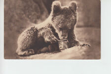 Tate & Lyle Golden Syrup. Bear with snout in tin. Advertising postcard