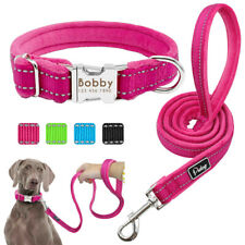 Pet Dog Collar And Leash Set Nylon Adjustable Padded Collar Dog Training Leash