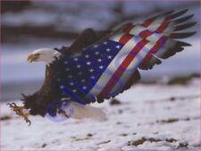 1x STICKER USA American Eagle Patriot decal 20 États