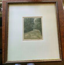 HAROLD ALTMAN ARTIST PROOF, Park VI, Hard to Find, Framed