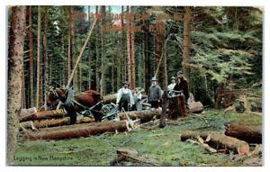 1909 Logging in New Hampshire Postcard
