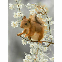 5D DIY Diamond Painting Full Drill Forest Squirrel Embroidery Kits Home Decor