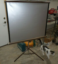 Nice Da-Lite Silver Pacer Movie Projector Screen! Made in USA! Manual Pull up!