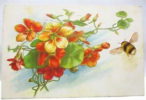 1910 POSTCARD BUMBLE BEE BY ORANGE FLOWERS