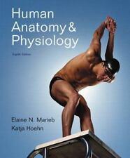Human Anatomy And Physiology by Marieb