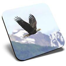 Square Single Coaster - Bald Eagle Bird America USA  #14245