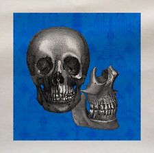 Blue Skull Head Face - Printed Fabric Panel Make A Cushion Upholstery Craft