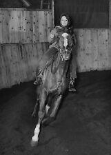 Photo originale Pascale Petit cheval