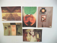 Lot 5 Vintage Postcards From Photographer   Sam Haskins All Different