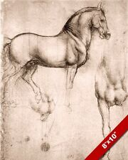 LEONARDO DA VINCI SKETCH PAINTING STUDY OF HORSE SHAPE REAL CANVAS ART PRINT