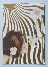 CP - FEMMES AU SOLEIL 3 PAR RAPHAEL KIRCHNER  - ED. DI MARIA - 1984 *