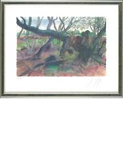Günter Grass (1927-2015), Waldlandschaft auf Møn, 2001 - signiert, nummeriert