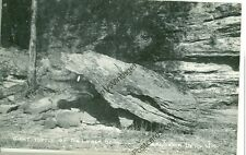 WISCONSIN DELLS LOWER  GIANT TURTLE REAL PHOTO VINTAGE(JL8-113)