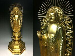 Japanese Japan,Buddhism shaka Jodo Shinshu,Buddha statue, Amitabha 53cm 松