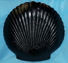 """ARCOROC FRANCE 13"""" BLACK SHELL SHAPED PLATTER SERVING DISH - COQUILLE"""
