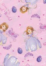 Princess/Fairies Theme Wrapping Papper Sheet
