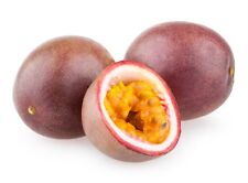 Passionfruit and Guava Type Soap / Candle Making Fragrance Oil 1-16 Ounce