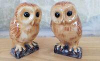 Quail Barn Owl Ceramic Salt & Pepper Shaker Pots Cruet Set Perfect Discontinued