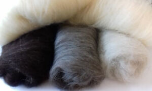 Pure Shetland Carded Core Wool Batts 4 Colours Undyed Natural UK Breed Felt Spin