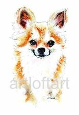 "CHIHUAHUA #6   DOG  ACEO Card Print by A Borcuk  2.5""x3.5"""